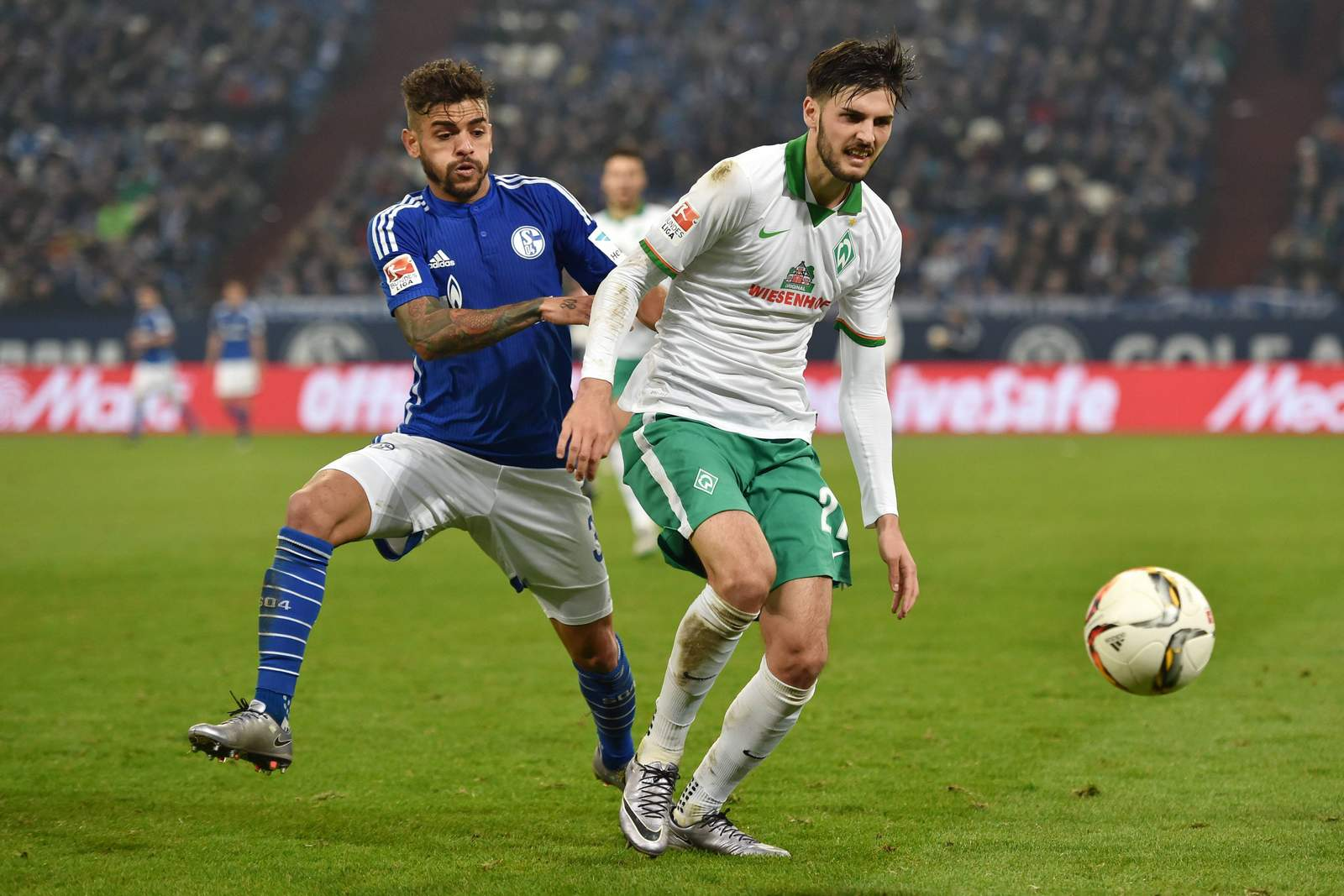 Junior Caicara bedrängt Florian Grillitsch. Jetzt auf Schalke gegen Werder Bremen wetten!