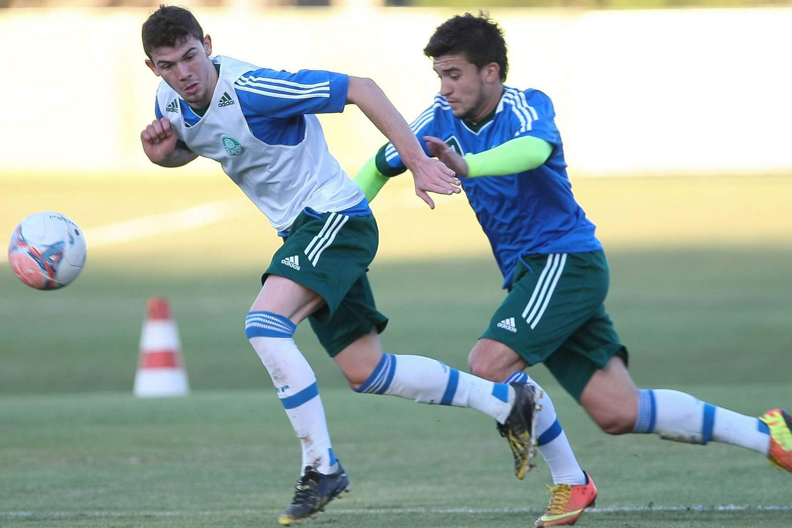 Luiz Gustavo von Palmeiras