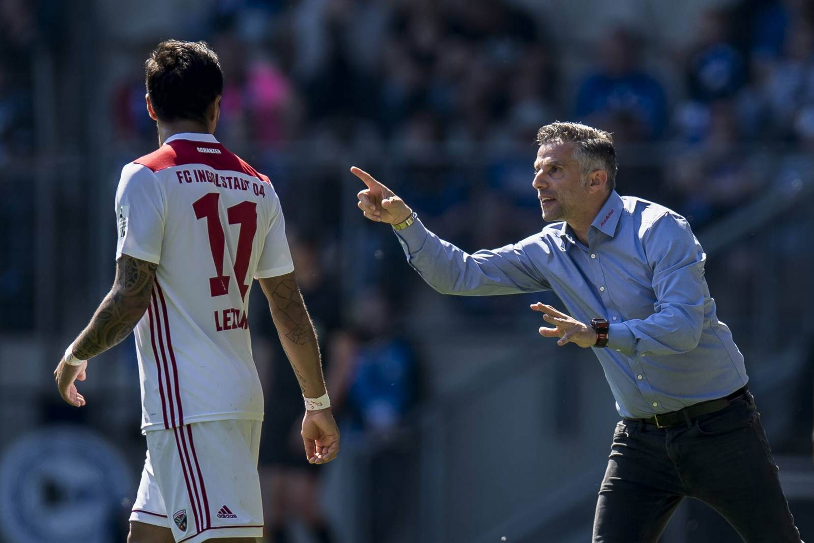 Tomas Oral dirigiert den FC Ingolstadt